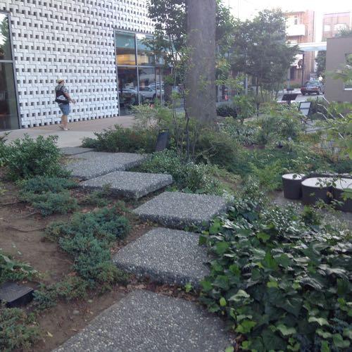 地形を活用し、段差を設けた庭